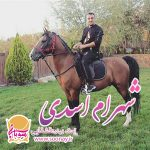 2193یونس احمدی